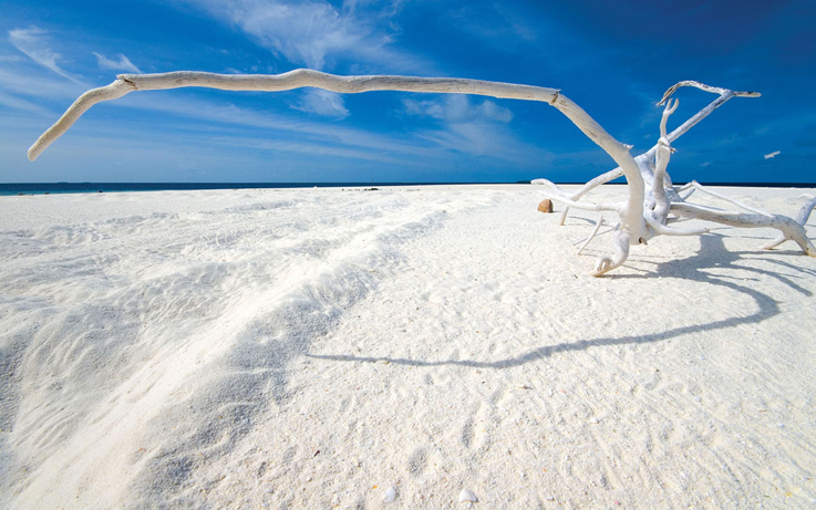 Hyams Beach in Australia.