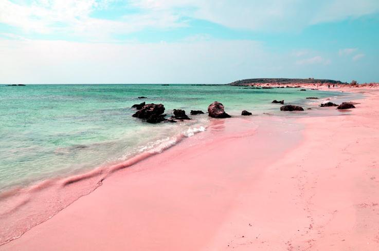 Horseshoe Bay Beach, Isole Bermuda.
