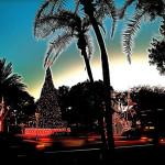 FLORIDA - La Florida è il paese dalle tante contraddizioni e sfaccettature, in grado di offrire un turismo capace di soddisfare qualsiasi esigenza. In Florida convive il lusso sfrenato di Miami Beach con la natura selvaggia delle Everglades, i grattacieli americani con la cultura latina. Le spiagge sono bianchissime e il clima è mite nonostante la stagione, con temperature anche prossime ai 30 °C. Meta ideale per chi vuole scappare dal gelo dell'inverno tipico del periodo natalizio, la Florida ospita eventi e manifestazioni folkloristiche per gli amanti delle tradizioni, ma anche locali, e serate che si protraggono fino al mattino per gli amanti del divertimento notturno.